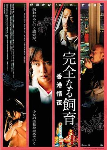 映画チラシ: 完全なる飼育 香港情夜