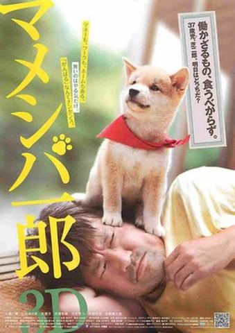 映画チラシ: マメシバ一郎3D