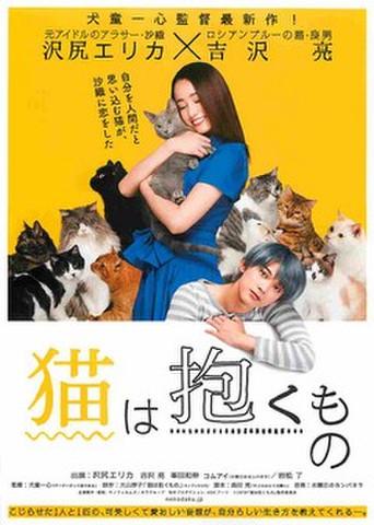 映画チラシ: 猫は抱くもの