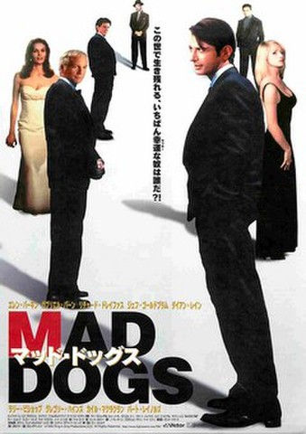 映画チラシ: マッド・ドックス(バック白)
