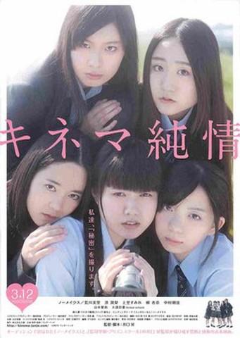 映画チラシ: キネマ純情