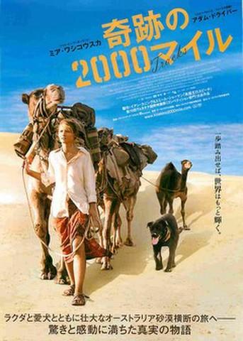 映画チラシ: 奇跡の2000マイル
