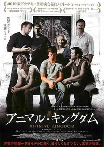 映画チラシ: アニマル・キングダム