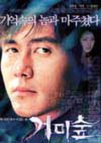 韓国チラシ555: スパイダー・フォレスト 懺悔