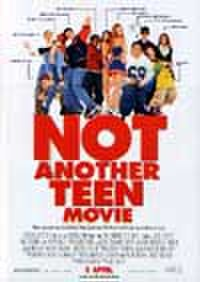 タイチラシ0781: NOT ANOTHER TEEN MOVIE