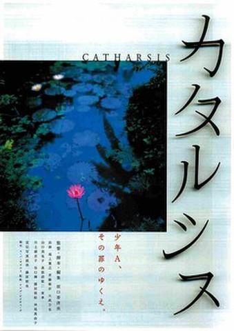 映画チラシ: カタルシス