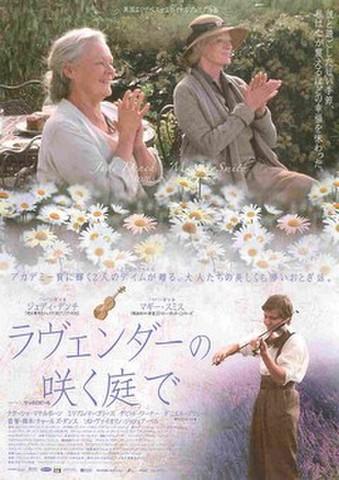 映画チラシ: ラヴェンダーの咲く庭で