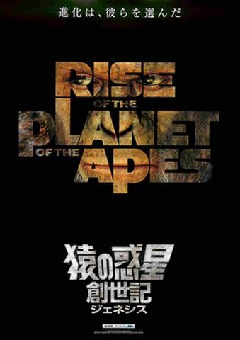 映画チラシ: 猿の惑星:創世記(進化は~:コピー上)