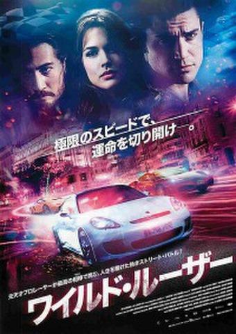映画チラシ: ワイルド・ルーザー