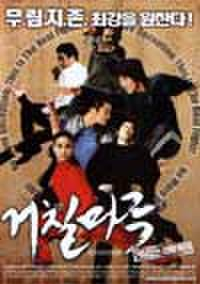 韓国チラシ353: コチルマル