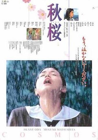 秋桜(試写状・宛名記入済)