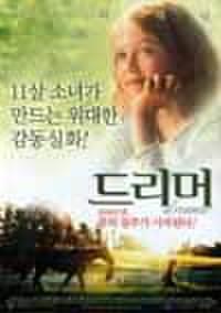 韓国チラシ906: 夢駆ける馬ドリーマー