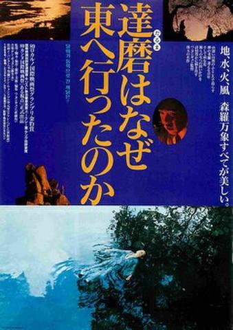 映画チラシ: 達磨はなぜ東へ行ったのか(裏面写真4点)