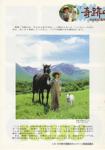 映画チラシ: 奇跡の山 さよなら、名犬平治(2枚折・山形県観光振興課タイアップ)