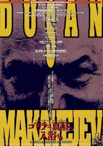 映画チラシ: 【ドゥシャン・マカヴェイエフ】マカヴェイエフ・フィルム・コレクション vol.2 ゴリラは真昼、入浴す。(2枚折)