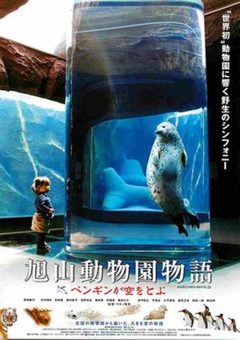 映画チラシ: 旭山動物園物語 ペンギンが空をとぶ(題字下)