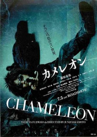 映画チラシ: カメレオン(英題あり)