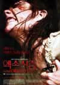 韓国チラシ952: エミリー・ローズ
