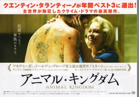 映画チラシ: アニマル・キングダム(小型・2枚折)