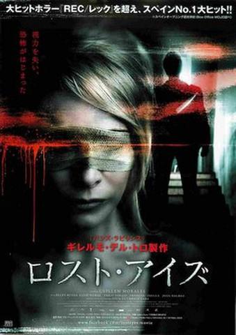 映画チラシ: ロスト・アイズ
