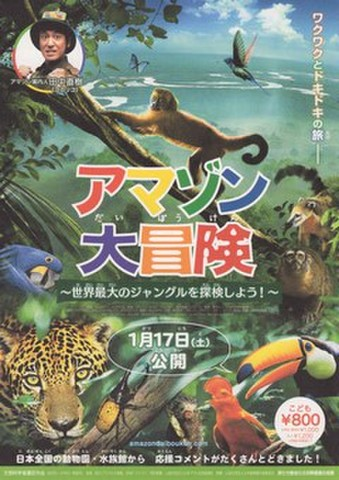 映画チラシ: アマゾン大冒険(2枚折)
