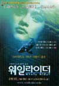 韓国チラシ471: クジラの島の少女