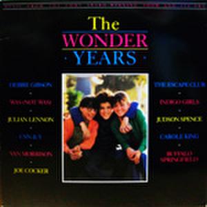 LPレコード445: ワンダー・イヤーズ 素晴らしき日々(輸入盤)
