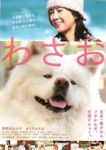 映画チラシ: わさお(人物あり)