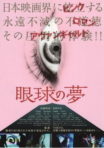 映画チラシ: 眼球の夢(3枚折・観音開き)