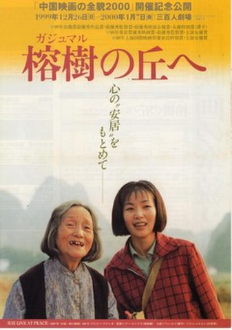 映画チラシ: 榕樹の丘へ(4枚折・中国映画の全貌2000)