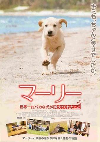 映画チラシ: マーリー 世界一おバカな犬が教えてくれたこと(キミも、ちゃんと~)