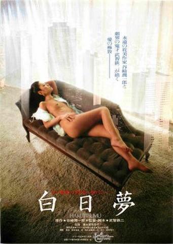 映画チラシ: 白日夢(武智鉄二)