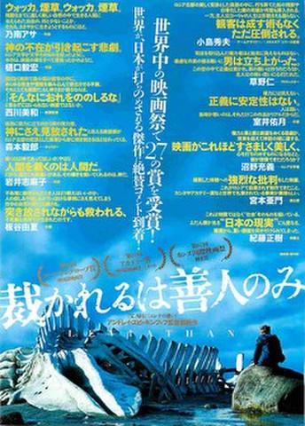 映画チラシ: 裁かれるは善人のみ(世界中の映画祭~)