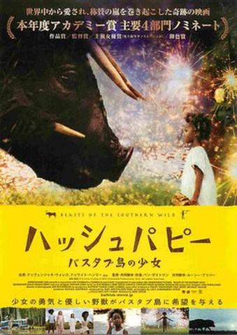 映画チラシ: ハッシュパピー バスタブ島の少女(題字濃茶)