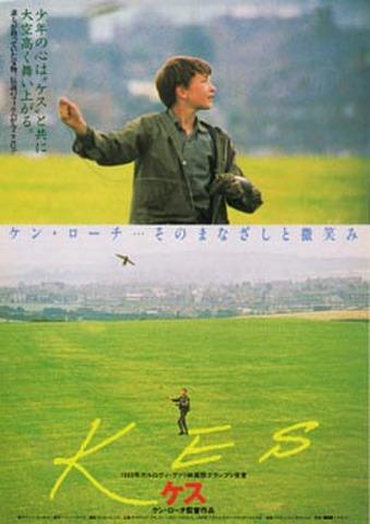 映画チラシ: ケス/レディバード・レディバード(2枚折)