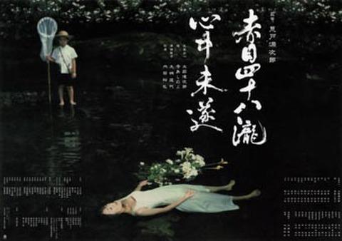 映画チラシ: 赤目四十八瀧心中未遂(A4判・裏面写真6点)