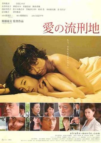 映画チラシ: 愛の流刑地