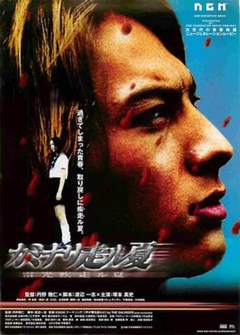 映画チラシ: カミナリ走ル夏
