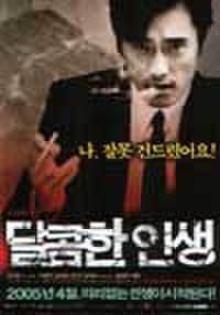 韓国チラシ720: 甘い人生