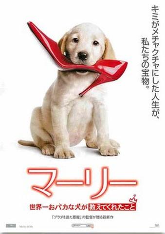 映画チラシ: マーリー 世界一おバカな犬が教えてくれたこと(キミがメチャクチャに~)