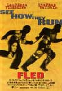 タイチラシ0915: F.L.E.D. フレッド