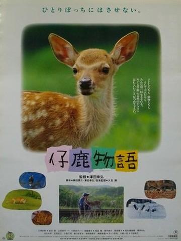 映画ポスター1426: 仔鹿物語