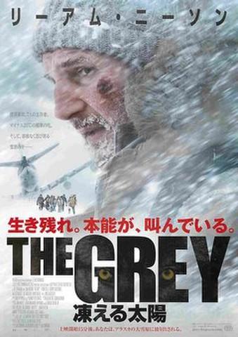 映画チラシ: THE GREY 凍える太陽