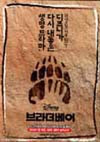 韓国チラシ134: ブラザー・ベア