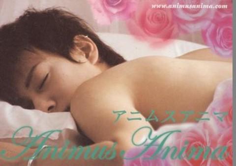 映画チラシ: アニムスアニマ(小型・4枚折)