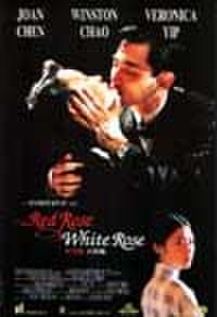 タイチラシ0333: 赤い薔薇 白い薔薇