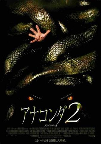 映画チラシ: アナコンダ2