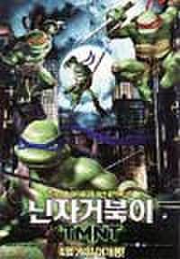 韓国チラシ344: TMNT