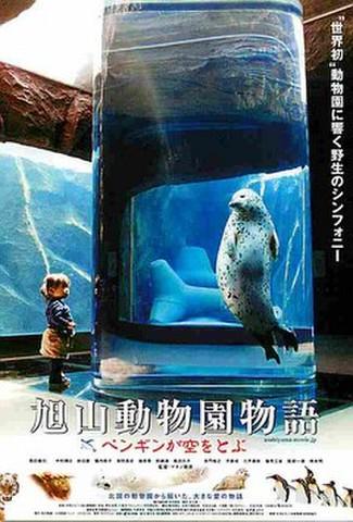 旭山動物園 ペンギンが空を(試写状)