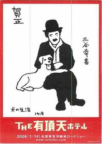 THE有頂天ホテル(試写状・犬の生活柄・宛名記入済)